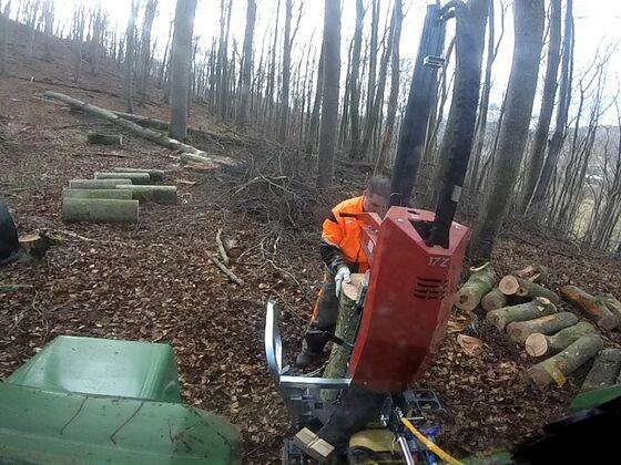 Brennholz machen 2020 Teil 2