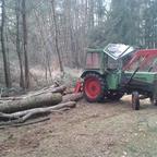 Fendt 102 S rückt Holz