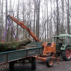 Holz laden