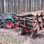 103 LSA im Wald