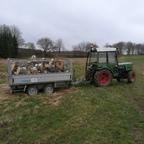 Brennholz Transport