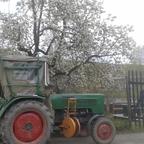Farmer im Frühling