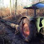 Im Wald mit Favorit 3