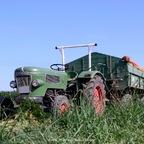 Getreide abfahren mit Farmer 2D