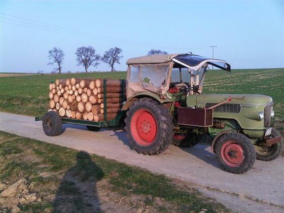 Farmer 2 mit Lärche Stammholz