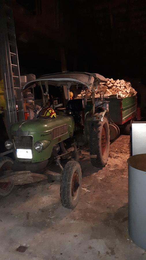 Farmer 2 D mit Mengele voll mit Holz