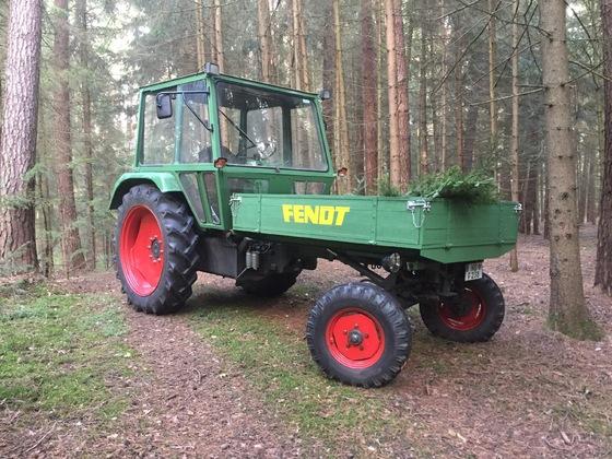250 GTS im Wald