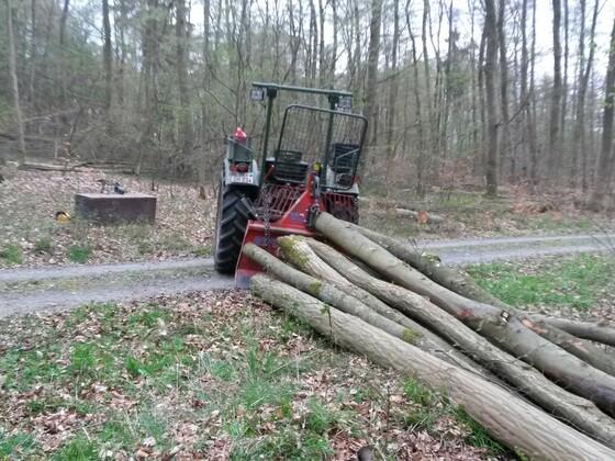 Farmer 2 beim Brennholz rücken