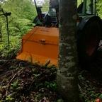 Im Bergwald mit 275 S