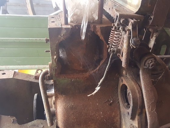 Frostschaden vom feinsten am 12er Dieselross