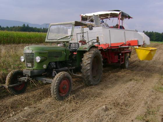 Farmer 2 bei der Kartoffelernte