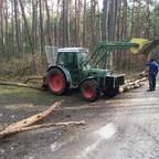 Forstarbeit - Fendt 250S mit Seilwinde