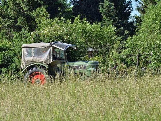 Gras mähen zur Heuernte 2017 mit Fingermähbalken