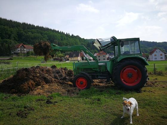 Farmer 106S bei anrüchiger Arbeit