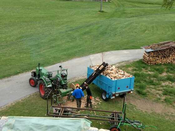 Mein Fendt Farmer 2E Bj'68 bei der Holzarbeit